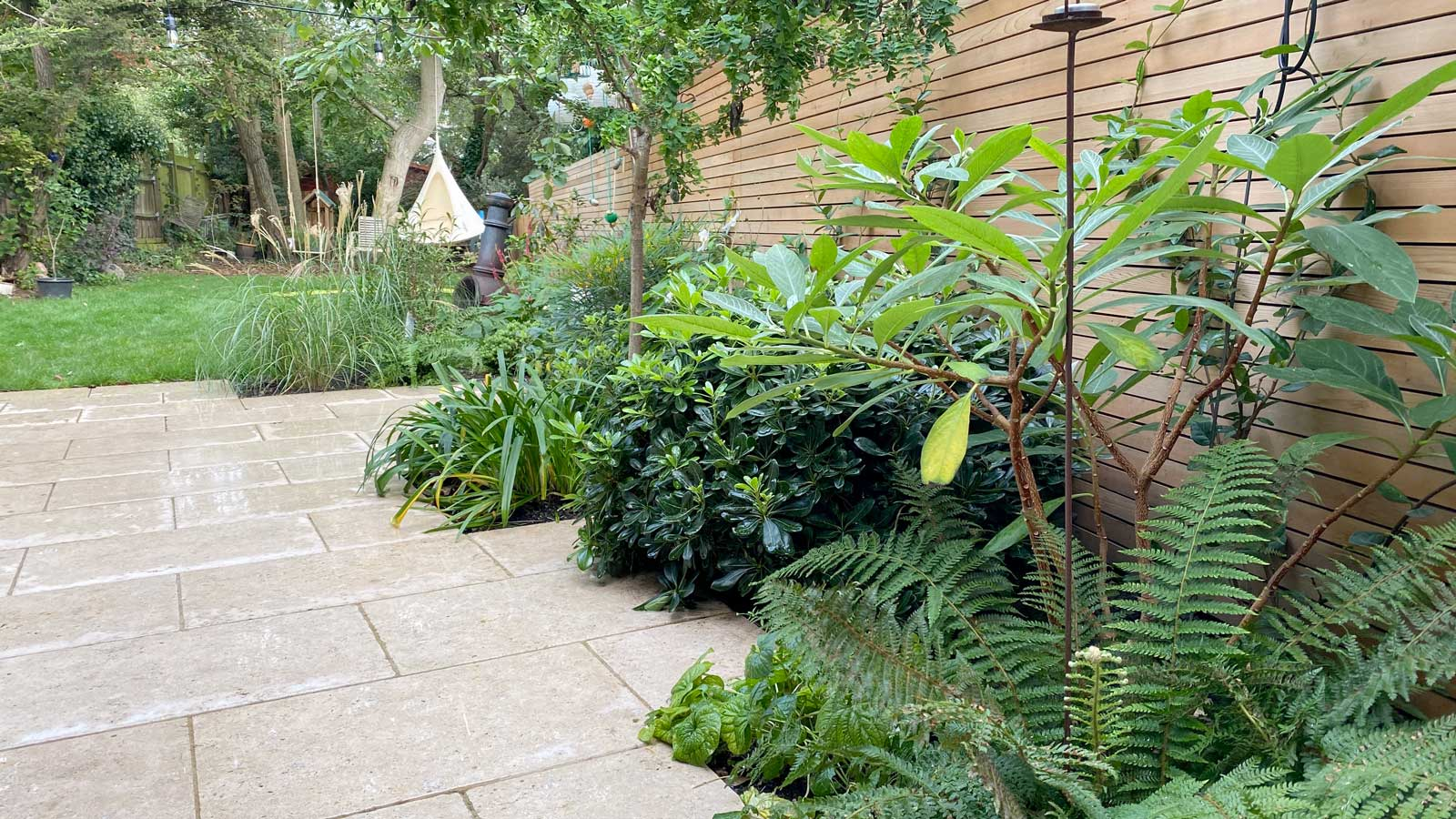 Back Garden in Crouch End, 2