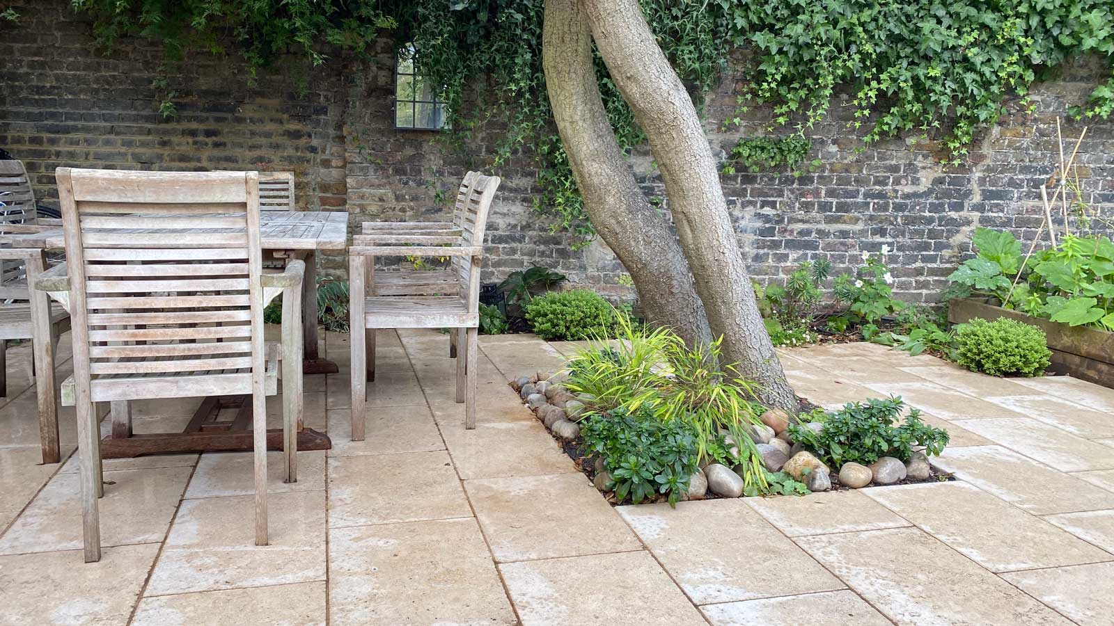 Back Garden in Crouch End, 3