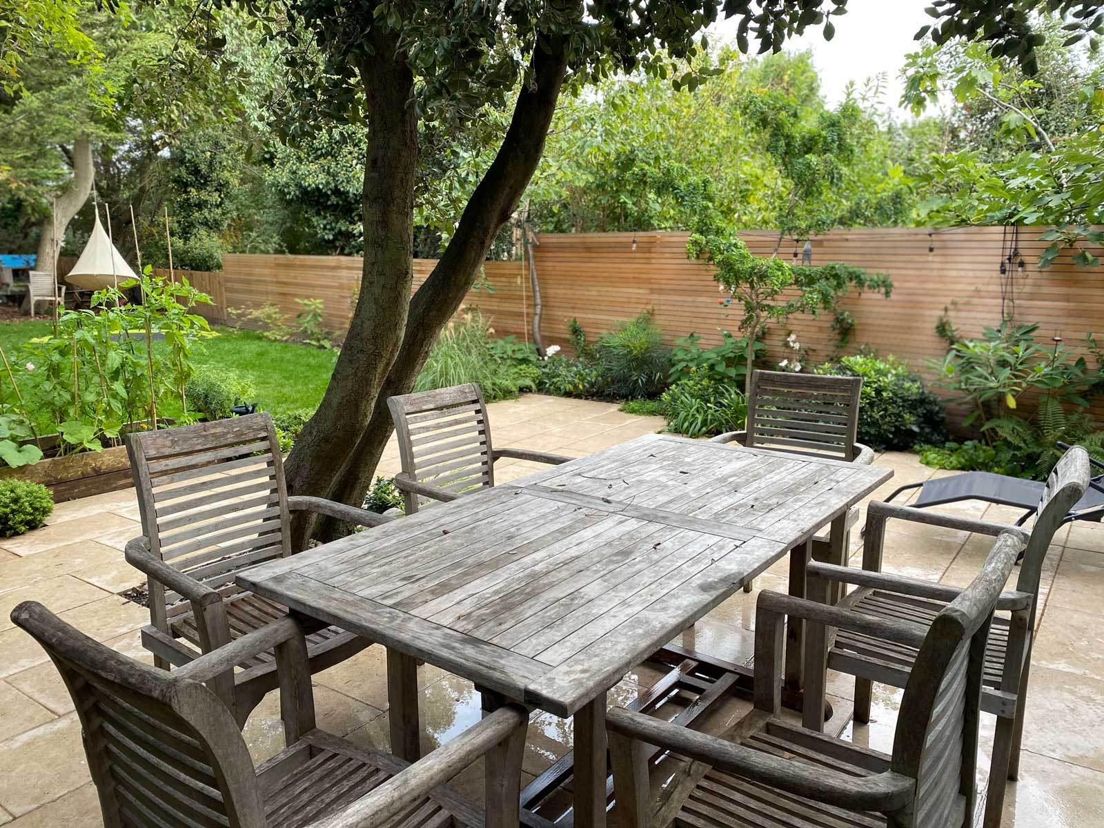 Back Garden in Crouch End, 5