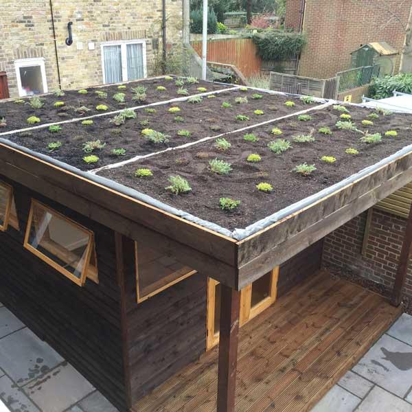 Garden outbuilding in North London by FMN Gardens
