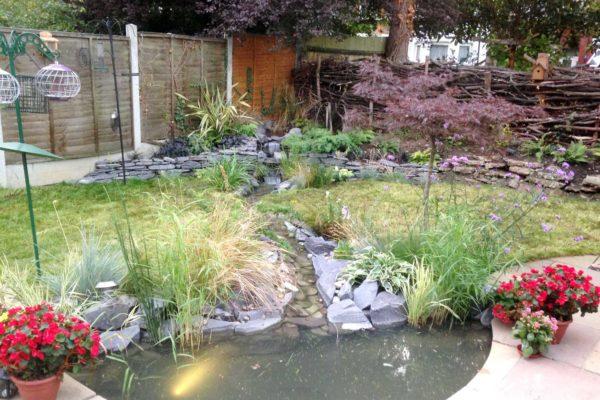 Garden pond in North London