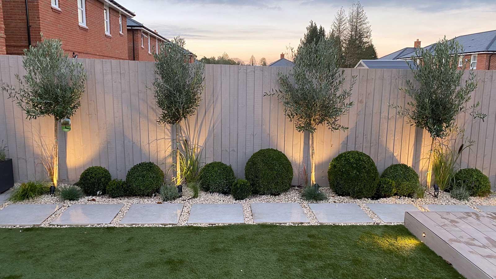 Back Garden in Radlett - path and backlit trees